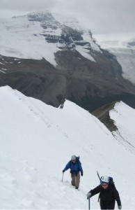 CORE members ascending Mt Nigel near the Columbia Icefields