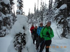 Boom Lake Snowshoe Trail