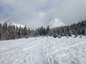 Chester Lake Snowshoe - Misty Mountains