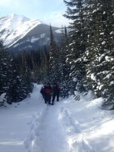 Mount Murray Snowshoe