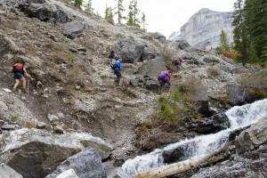 Memorial Lakes Scrambly Trail