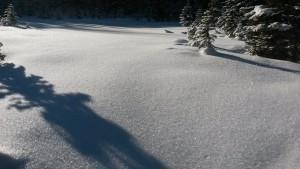 Snow Crystals - Highwood Pass