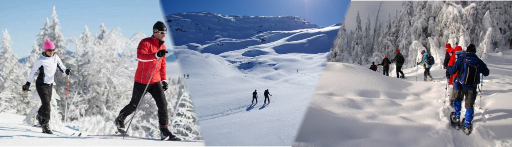 Nordic Skiing, AT Skiing and Snoshoing
